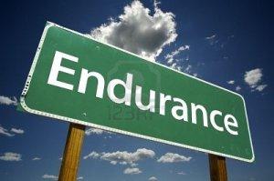 endurance 2