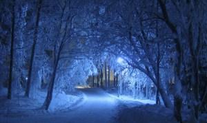 Pray Winter
